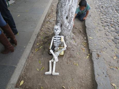 メキシコ放浪記 その①_e0161204_12472798.jpg