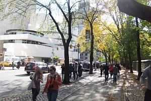 秋の陽射しで輝くニューヨークの美術館通り_b0007805_2010281.jpg