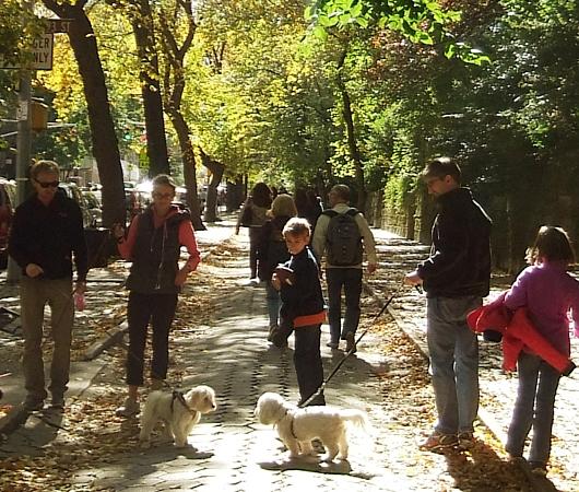 秋の陽射しで輝くニューヨークの美術館通り_b0007805_2011066.jpg