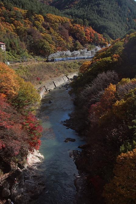 紅葉の諏訪峡 - 2011年・上越線 -  _b0190710_2332312.jpg