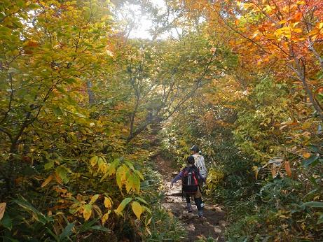 紅葉登山~念願の赤兎山①~_f0177714_206215.jpg