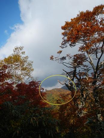 紅葉登山~念願の赤兎山①~_f0177714_208141.jpg