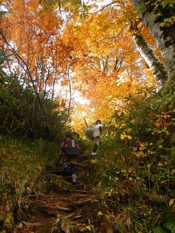 紅葉登山~念願の赤兎山①~_f0177714_2091274.jpg