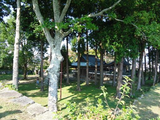 篠山観光_d0225727_814539.jpg