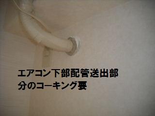 f0031037_22104511.jpg