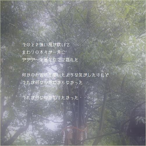 b0154475_22324399.jpg