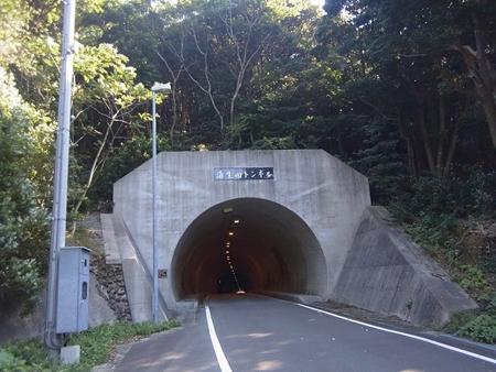 蒲生田岬へ_e0201281_2182036.jpg