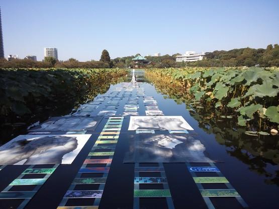 TOKYO  GREEN  2012_a0225587_14205119.jpg