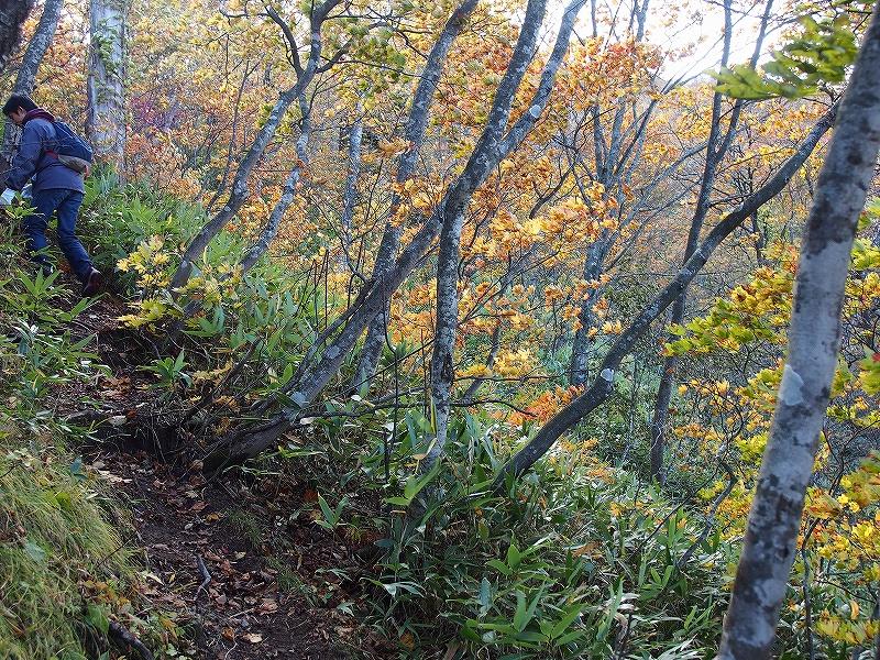 10月21日、風不死岳北尾根コース_f0138096_1522642.jpg
