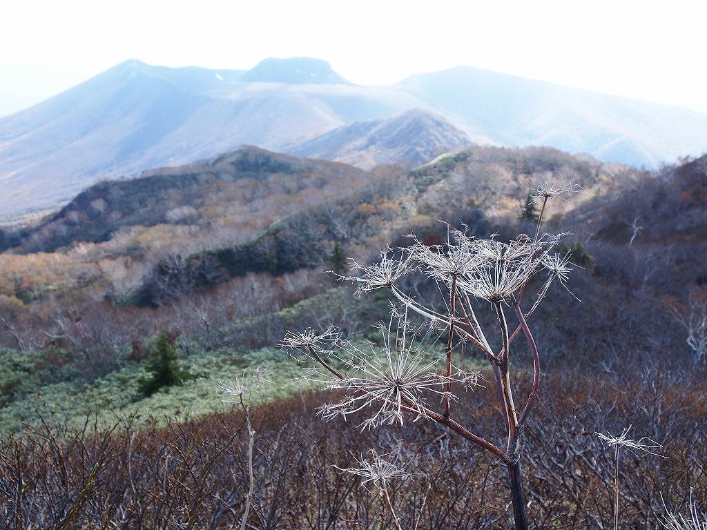 10月21日、風不死岳北尾根コース_f0138096_1523485.jpg