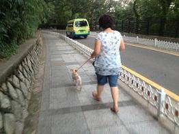 逃避行だぜ、ソウル! ⑲仁川自由公園_a0140305_0532155.jpg