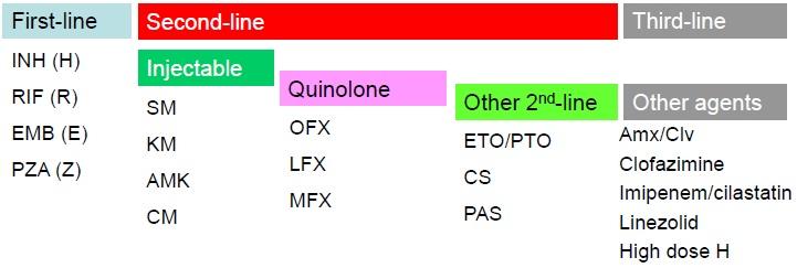 XDR-TBへの追加耐性はアウトカム不良と関連_e0156318_1058449.jpg