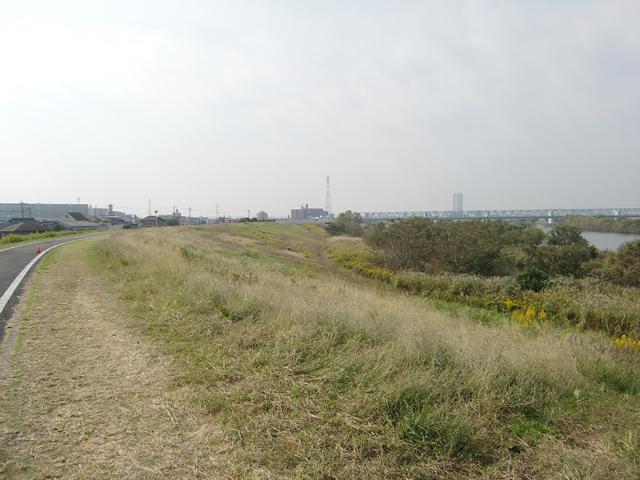 【チャリ】走る江戸川サイクリングロード2_a0293131_14245171.jpg