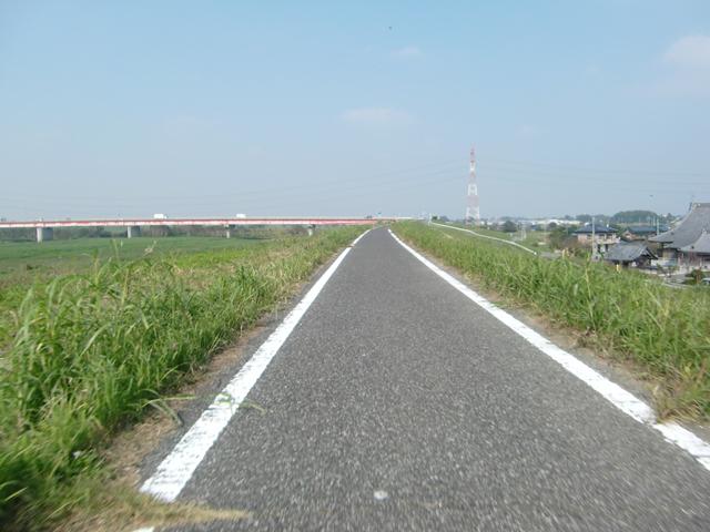 【チャリ】走る江戸川サイクリングロード2_a0293131_1434044.jpg