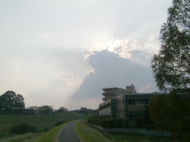 【チャリ】走る江戸川サイクリングロード2_a0293131_150783.jpg
