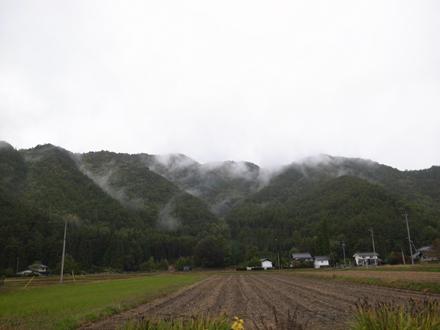 ゆるやかな雨_a0014840_21542089.jpg