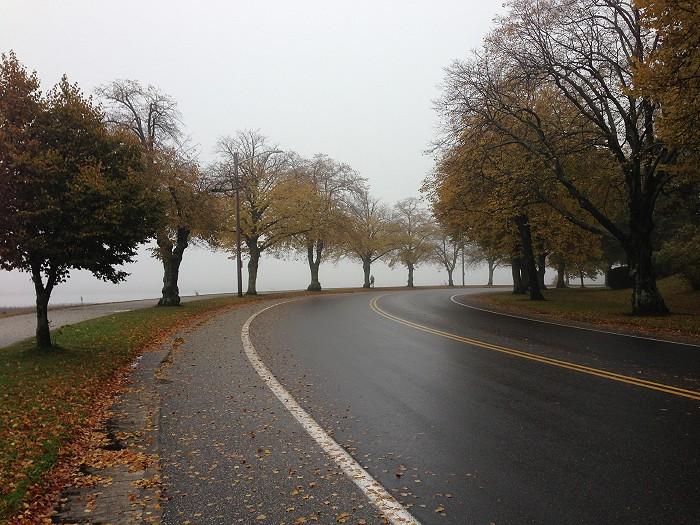 霧に覆われたバックコーブ_c0135045_11162735.jpg