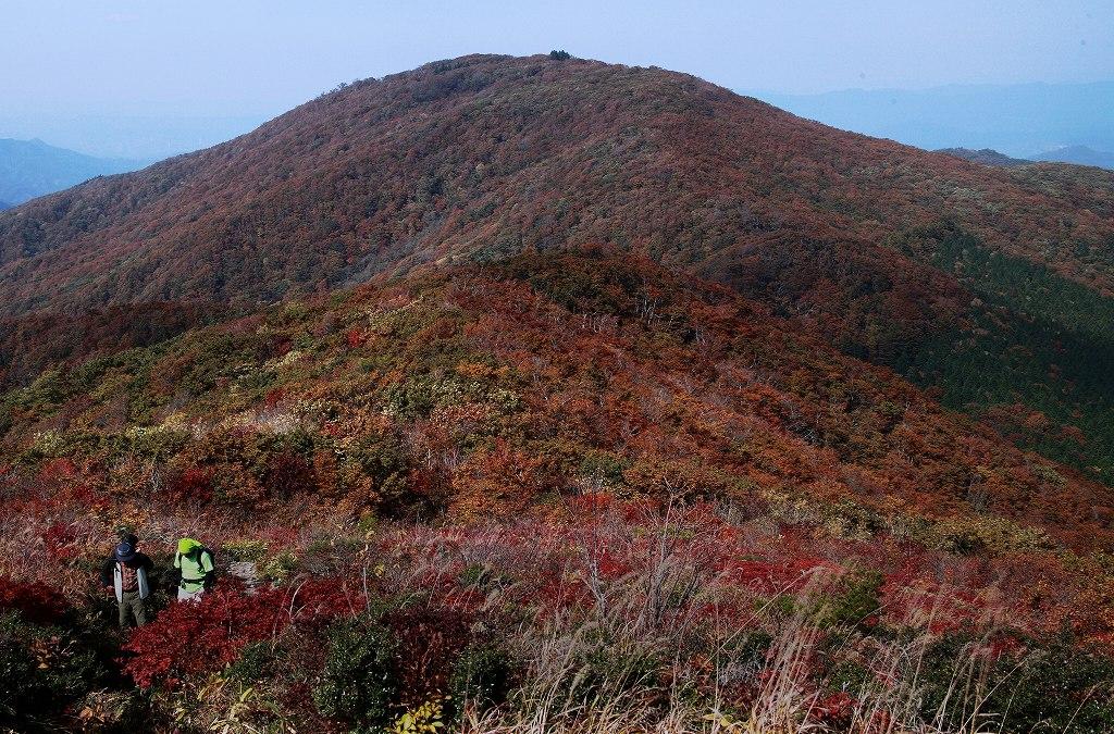 山に暮らせば_e0091879_0254411.jpg