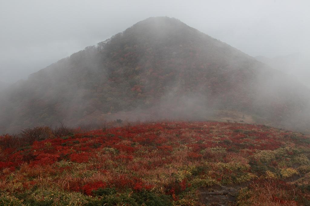山に暮らせば_e0091879_22514293.jpg