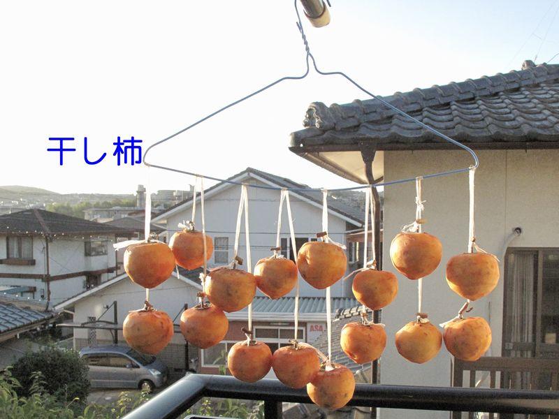 f0059498_204369.jpg