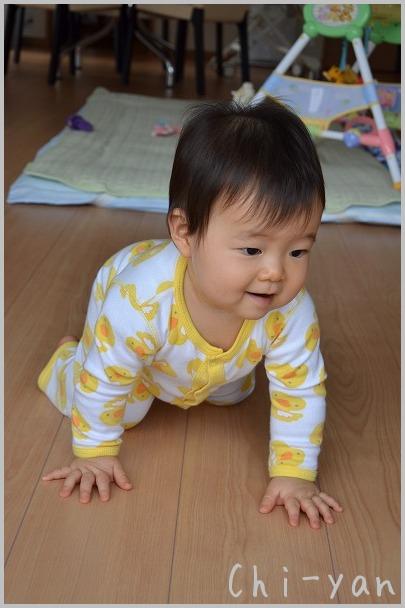 赤ちゃん撮影_e0219011_15312752.jpg