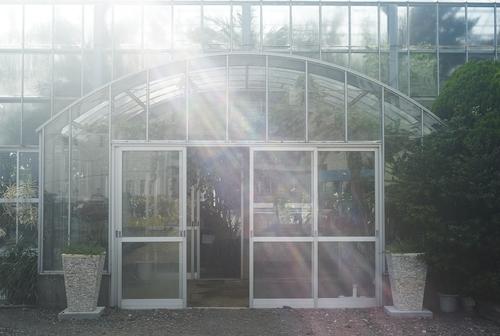 植物園へ行く_b0212922_1336207.jpg