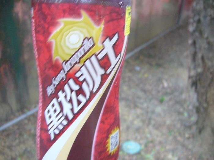 台湾旅行2012・その4(台湾新幹線、台南)_f0124235_21431941.jpg