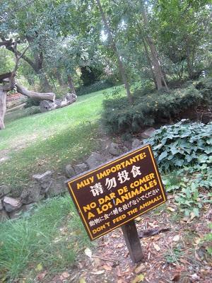 (番外編)マドリッドの動物園!_e0120938_18505397.jpg