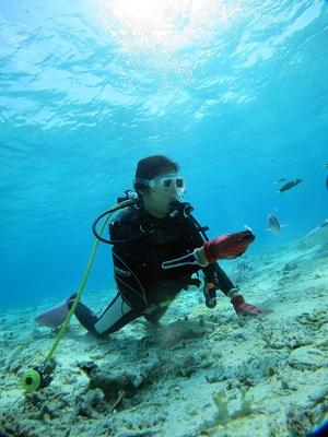 綺麗なサンゴポイントで体験ダイビング!_a0156273_12451772.jpg