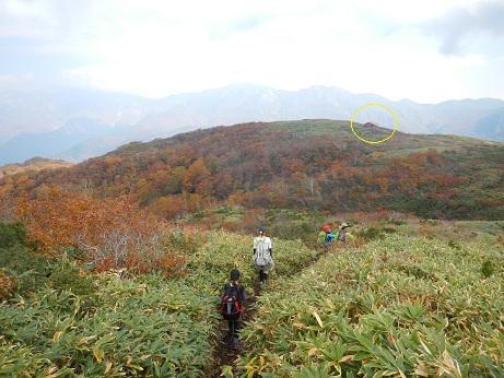 紅葉登山~念願の赤兎山②~_f0177714_13292644.jpg