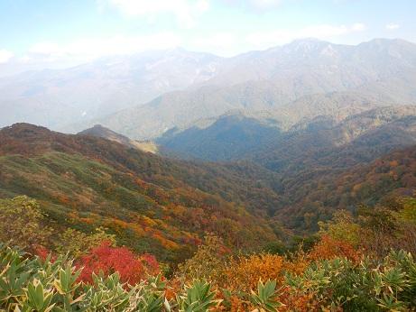 紅葉登山~念願の赤兎山②~_f0177714_13384785.jpg