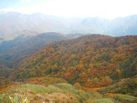 紅葉登山~念願の赤兎山②~_f0177714_13391891.jpg