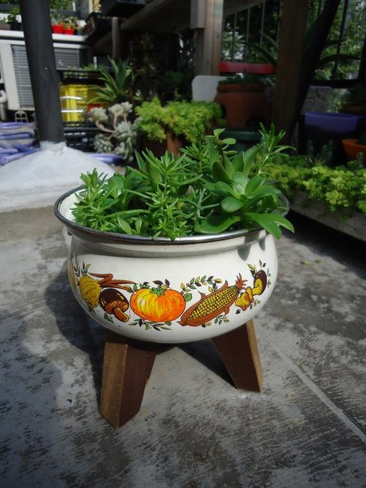 古いお鍋の使い道_d0225727_21182535.jpg