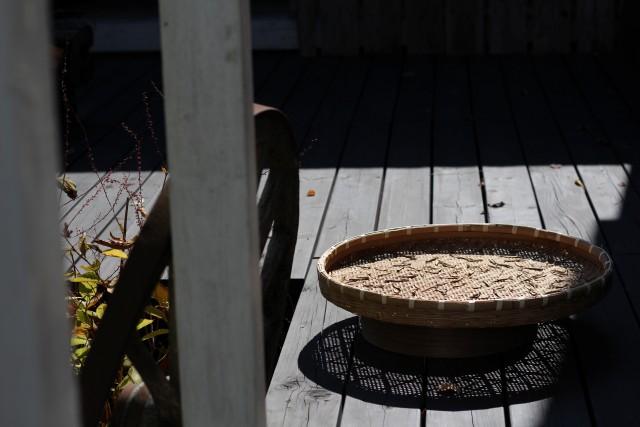秋色の庭_b0132338_11543965.jpg