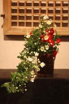 花だより_a0279848_22112653.jpg