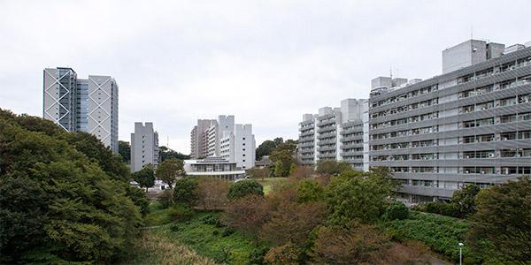 2012/10/25 DP1Merrillの彩度・・・_b0171364_1643513.jpg