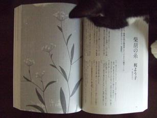 「小説すばる」11月号_e0182479_2217193.jpg