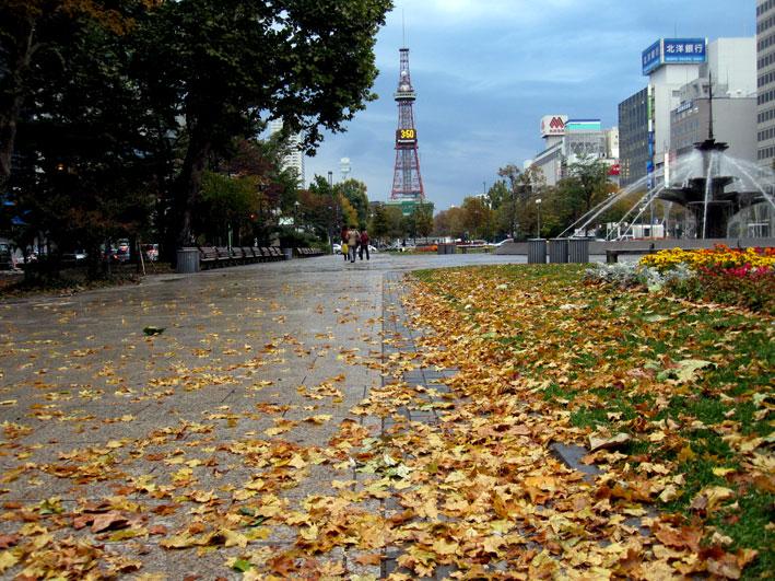 吾作の札幌旅行_b0145296_22104637.jpg