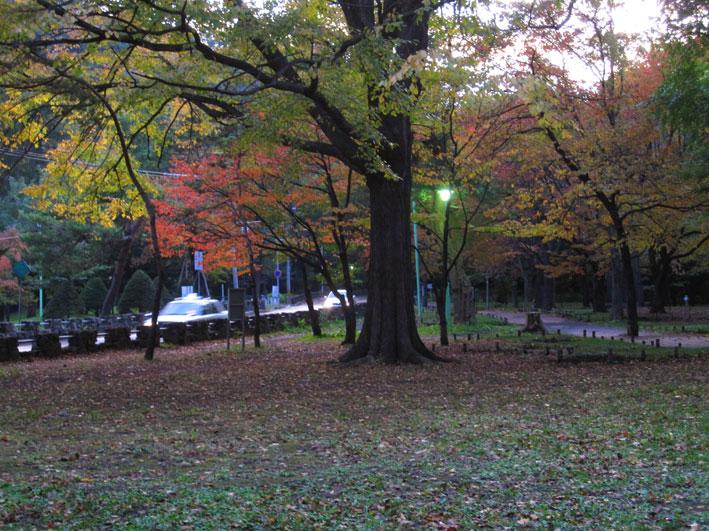 吾作の札幌旅行_b0145296_22115898.jpg