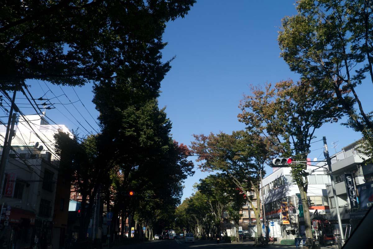 千駄ヶ谷「函館海鮮 漁火」_a0271402_8394373.jpg