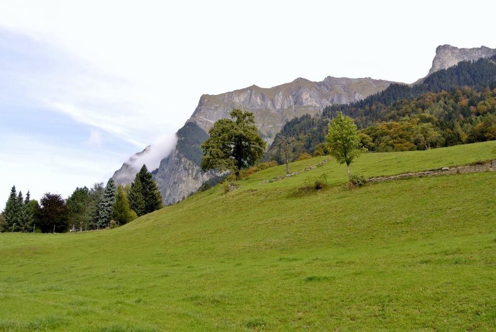 スイス紀行4:ハイジの村_a0148206_2227887.jpg