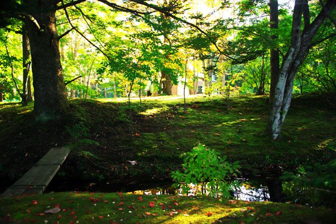 軽井沢 雲場池の紅葉1_a0263109_10412070.jpg