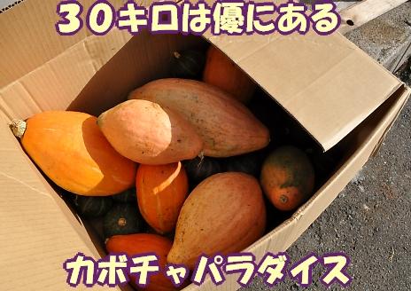 b0067012_17542311.jpg