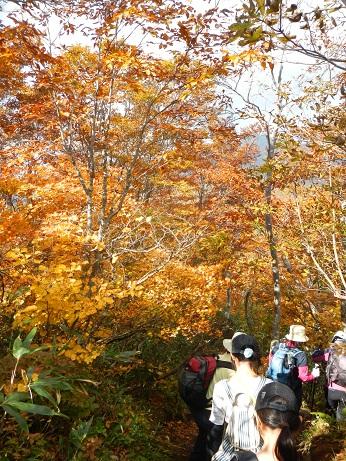 紅葉登山~念願の赤兎山③~_f0177714_16435111.jpg