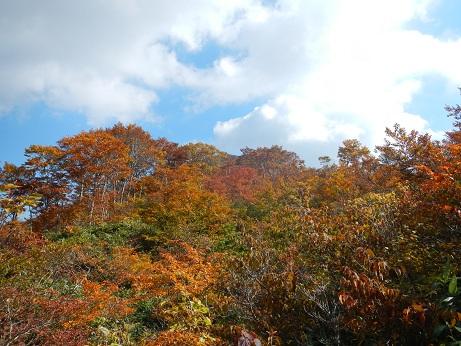 紅葉登山~念願の赤兎山③~_f0177714_1643563.jpg