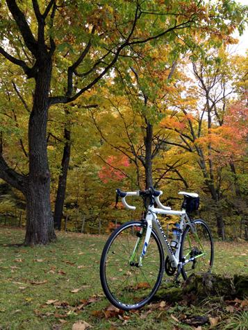 秋晴れの一日、富良野までサイクリング♪_f0096216_21213835.jpg
