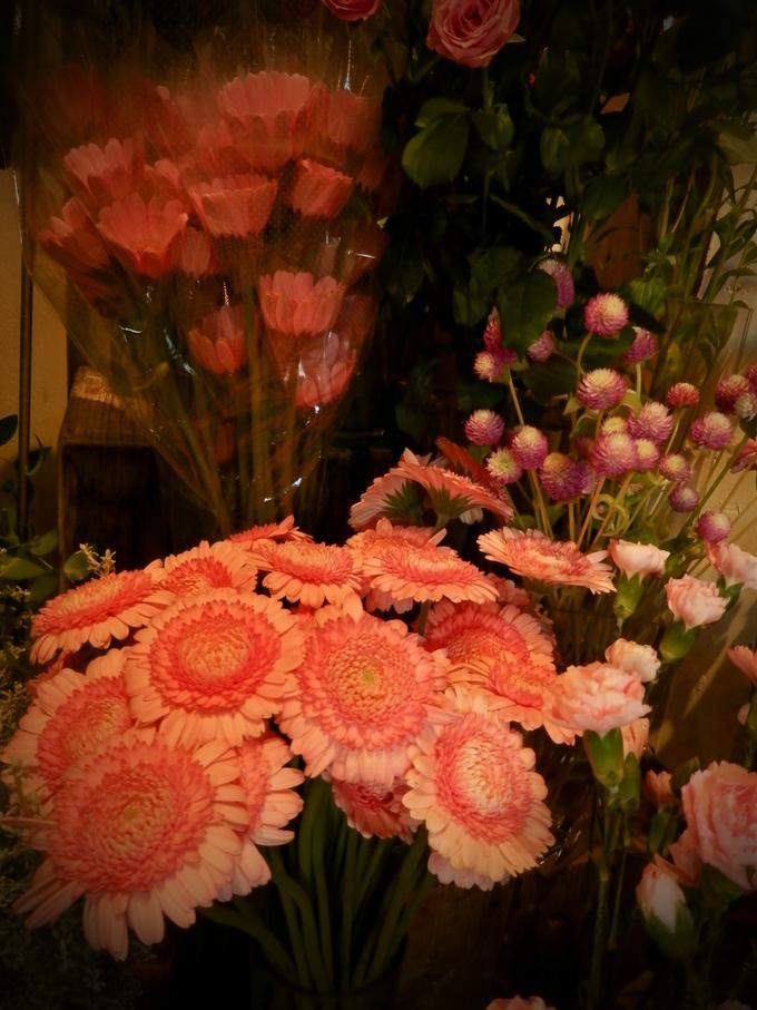 お花屋「ショコット」さんへ☆_a0125419_22525977.jpg