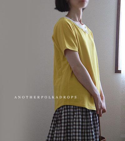 長袖のきれいラインTシャツは半袖になるか_d0012237_22501942.jpg