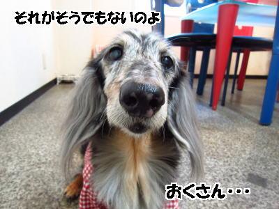 d0020869_14105123.jpg
