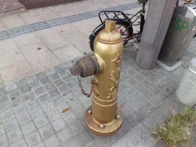 金色の消火栓を探せ!_a0025572_2324111.jpg